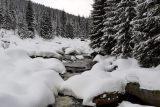 Letošní zima přinesla krajině dostatek vláhy. Odborníci varují, že i přesto nadále hrozí sucha