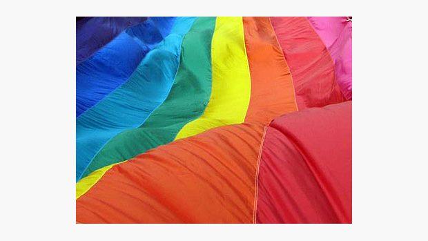 Zakon o homosexualite