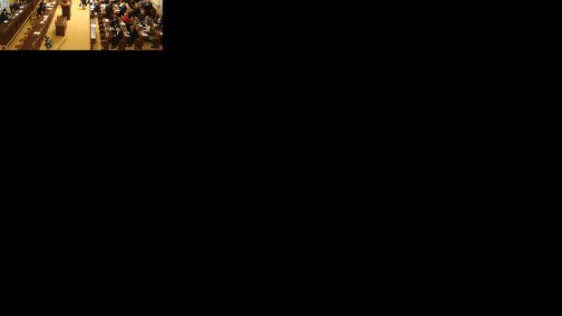 Strany v poslanecké sněmovně a jejich předsedové