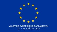 Volby do Evropského parlamentu 2019 - Eurovolby