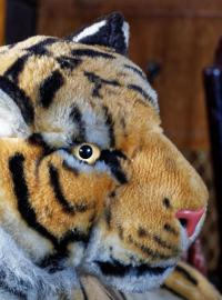 tygr tygr rychlost z Londýna